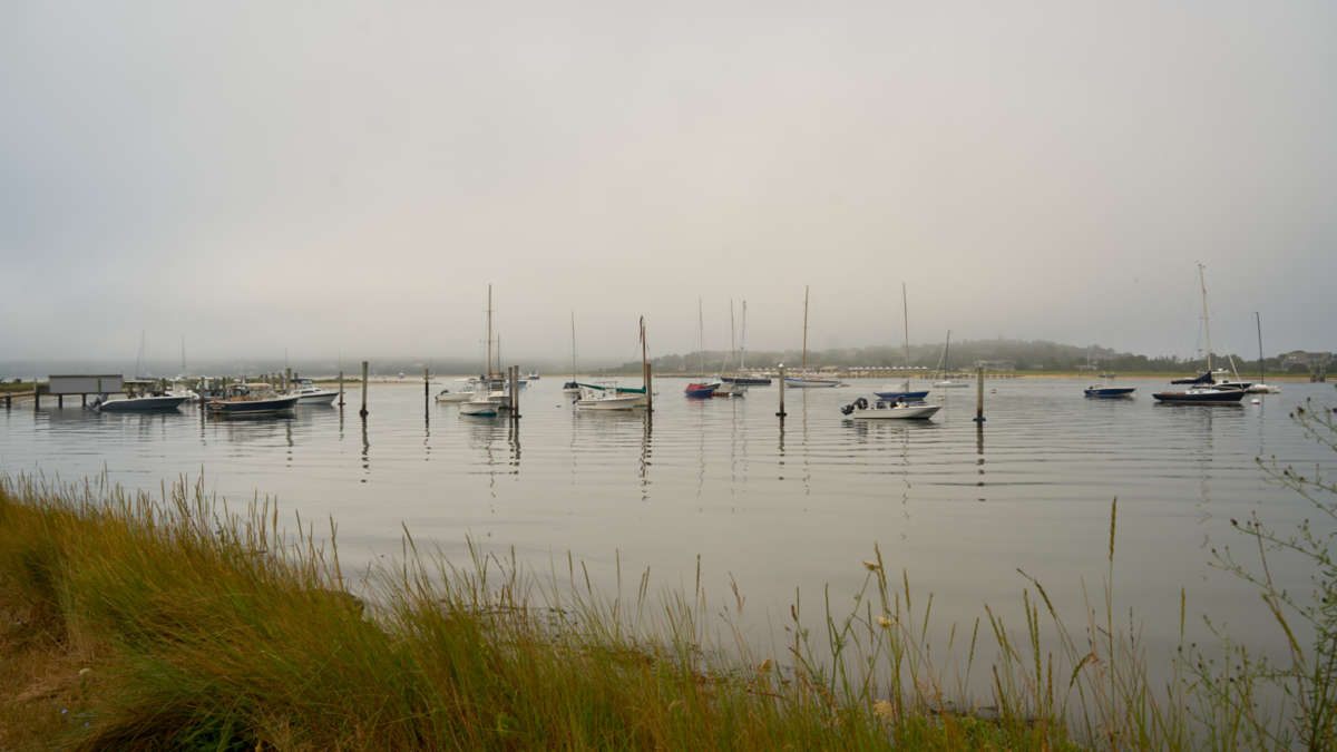 Boats docked out on the harbor on a calm foggy day
