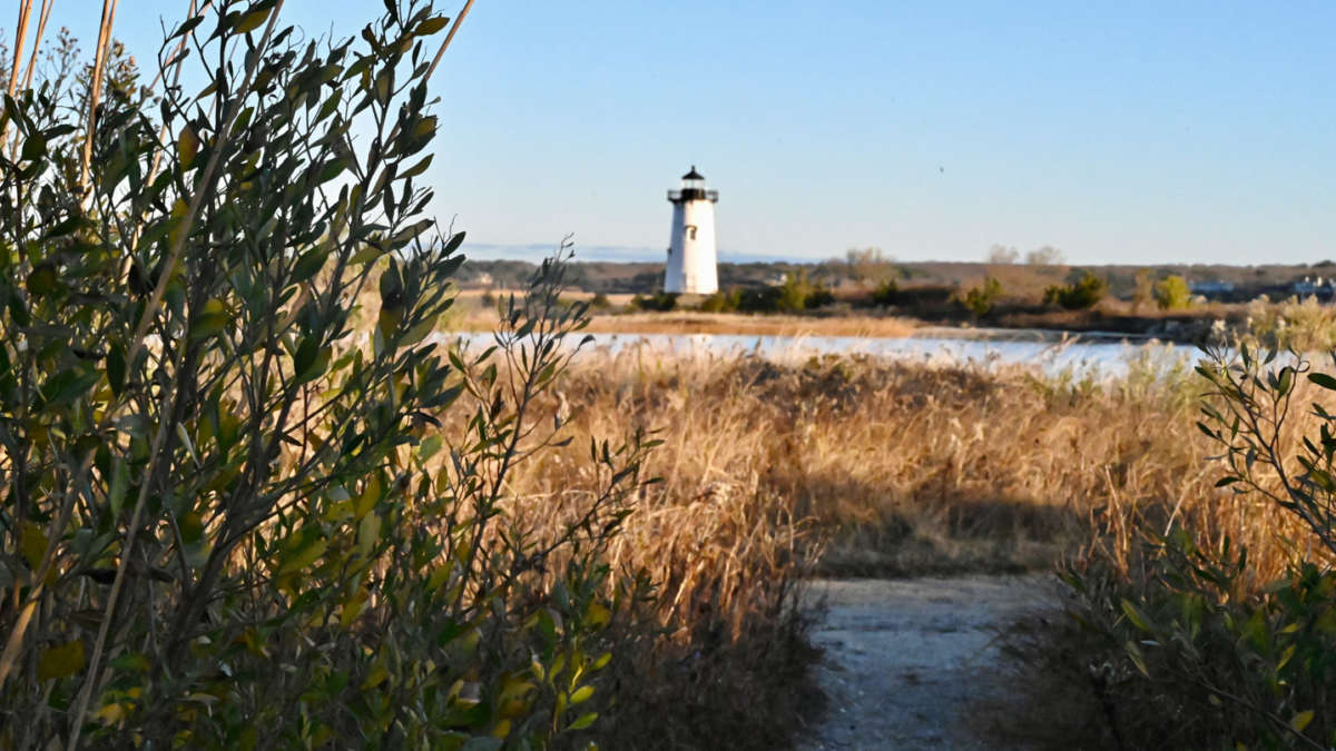 View of the lighthouse during fall