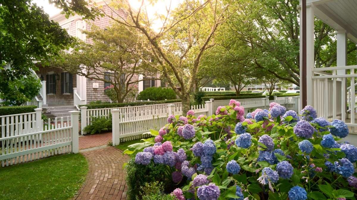 Beautiful walkway flanked by flowers