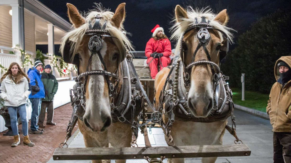 Two horses attached to a carriage during winter