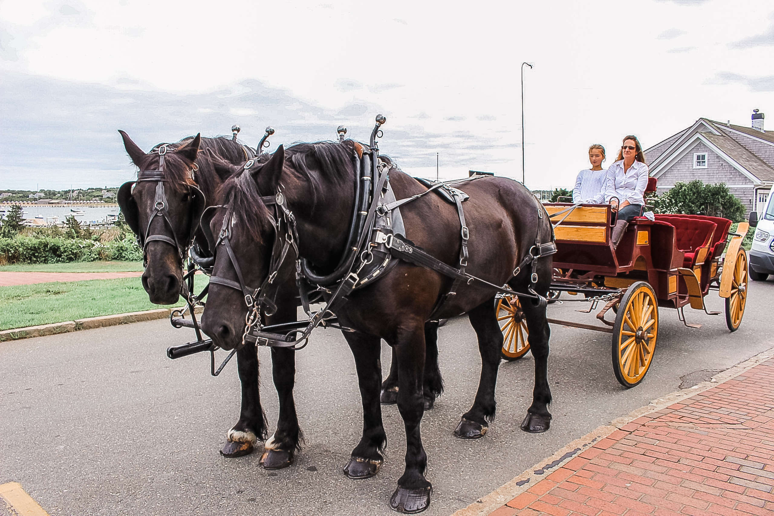 Two horse with a carriage in front of the hotel.