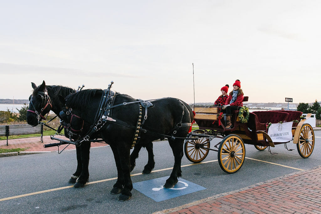 two black horses, a red sleigh and two people sitting on the carriage